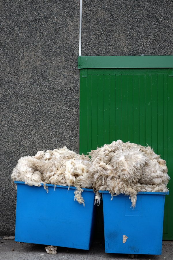 shetland wool kathy cadigan