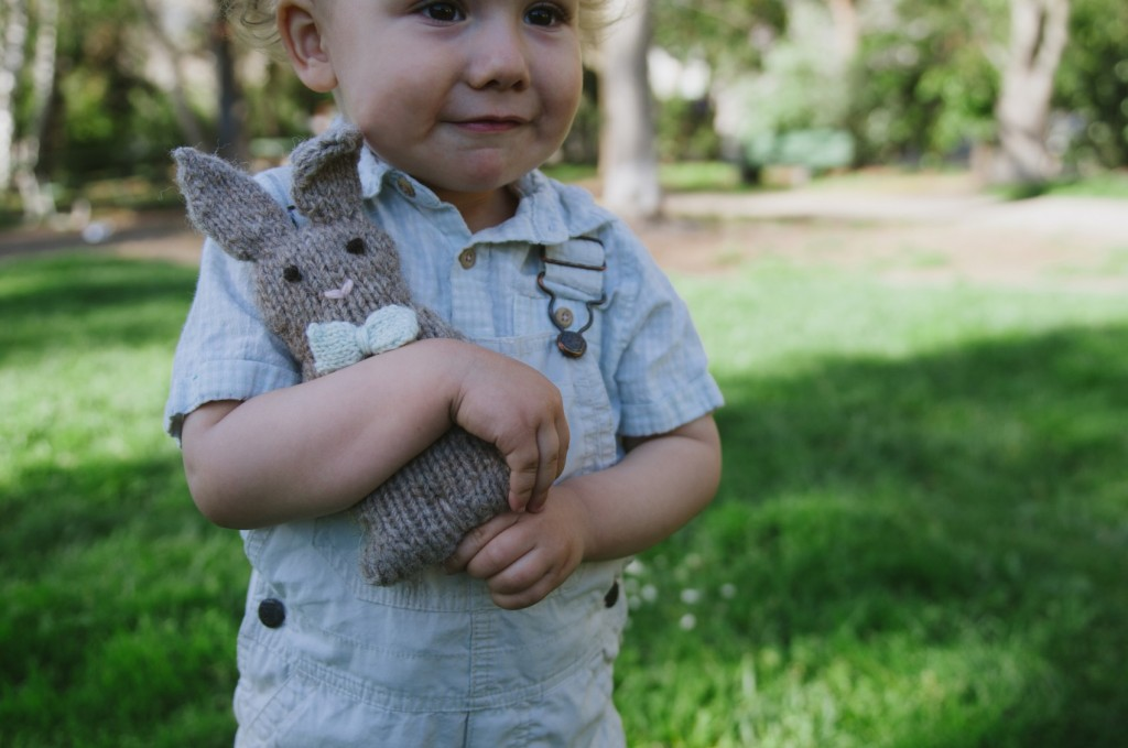 beau the bunny