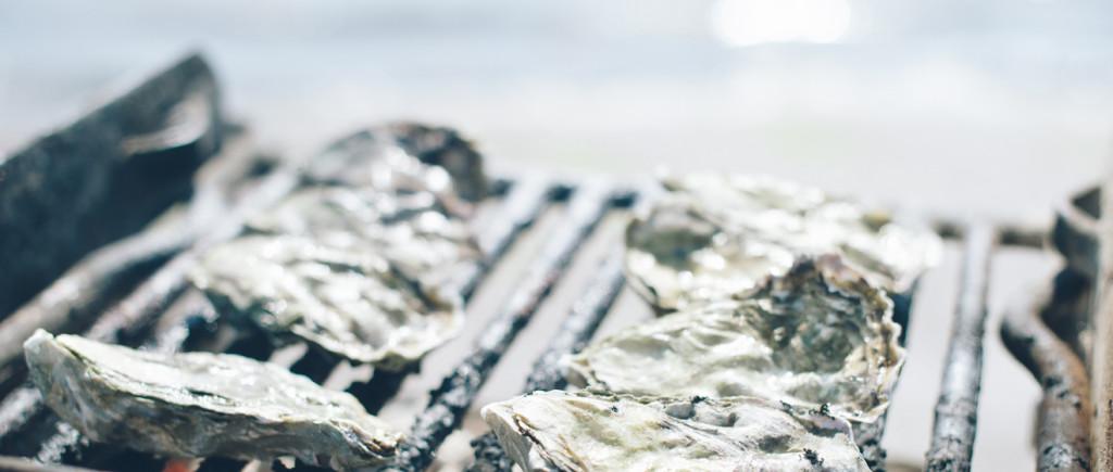 tomales bay oyster co david klayton