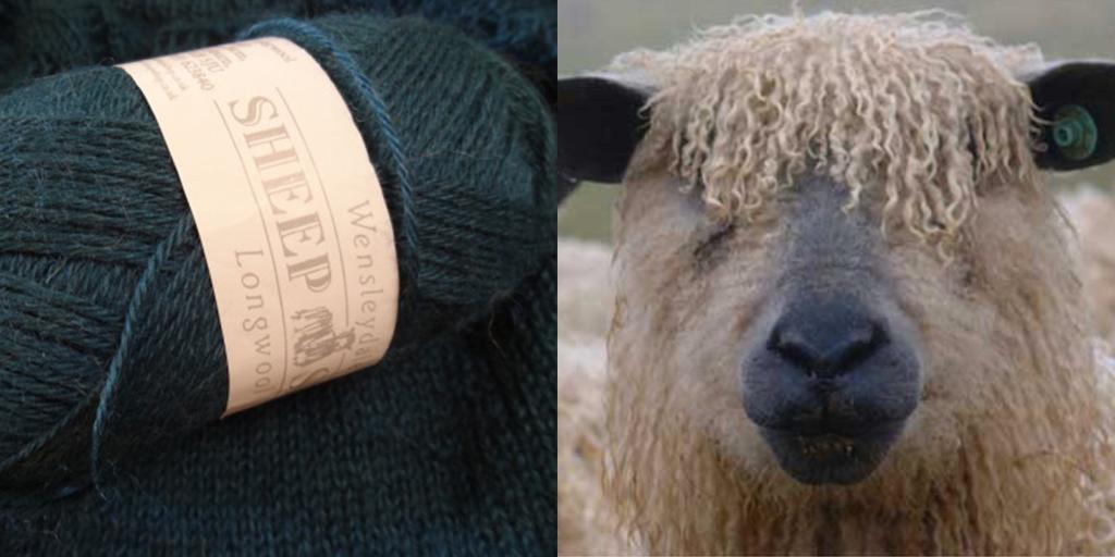 sheepshopwensleydale